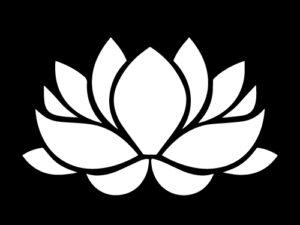 концерт медитация